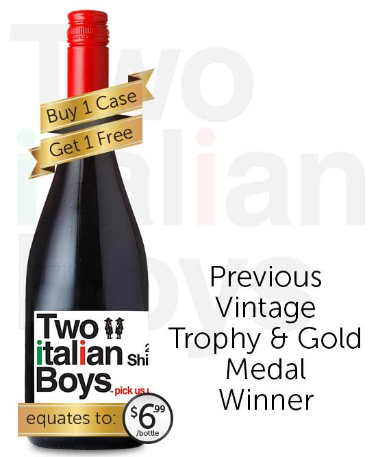 Two Italian Boys Shiraz 2019