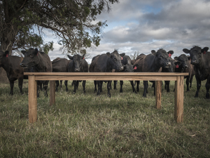 Dining with the Cows! by Trevor Neal - Dining Table, Recycled Timber, Hardwood, Solid Timber, Furniture, Contemporary Furniture