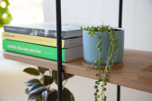 Staple Wide Shelf by The Staple Collection - Wire, Rod, Bookshelf, Minimal