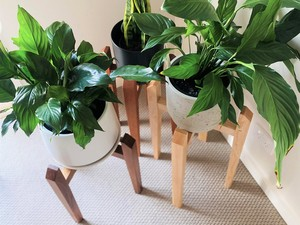 Plant Stands by Christopher Neal - Plantstand, Plantstands, Plantpotstand, Potstand