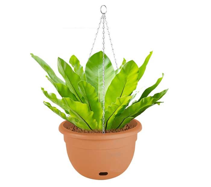 Watermatic 34cm Self Watering Pot