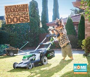 Mowing Dog