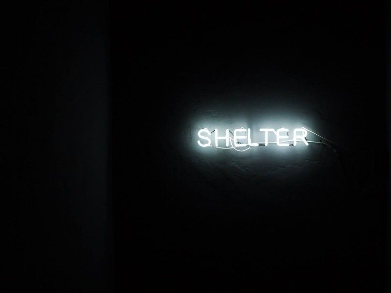 illustration of The Shelter #3