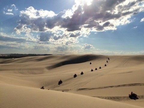 illustration of Sand Boarding the Stockton Sand Dunes #2