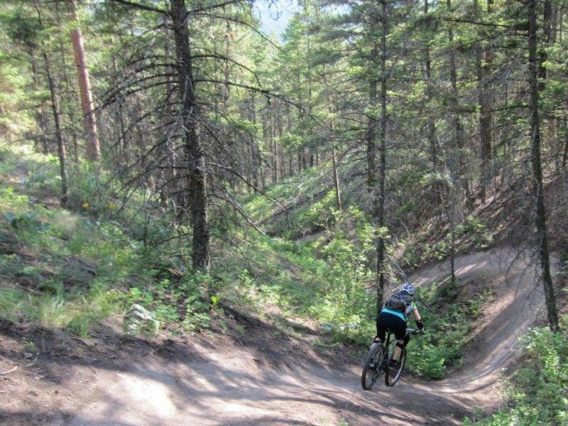 illustration of Mountainbiking Smith Creek  #2