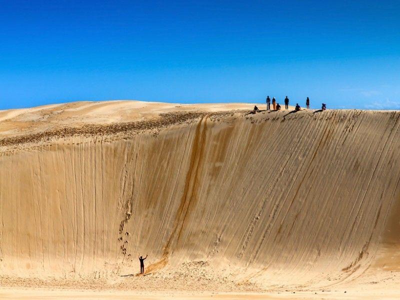 illustration of Sand Boarding the Stockton Sand Dunes #1
