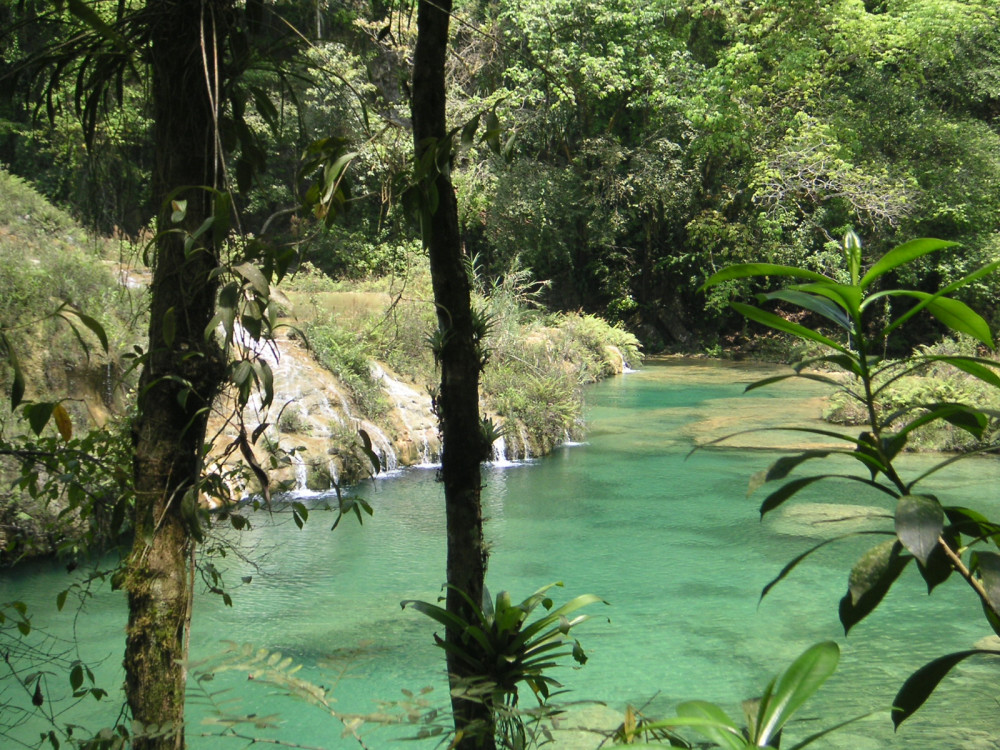 illustration of Semuc Champey #1