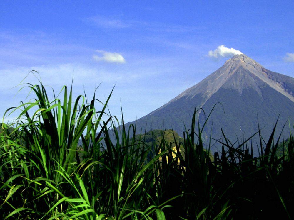 illustration of Hike Acatenango Volcano #1
