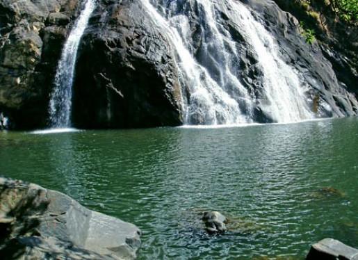logo of Dudhsagar Waterfalls