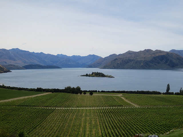 new zealand wineries visited in a hired campervan