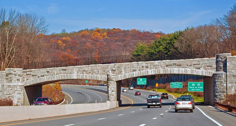 Fall on the Taconic State Parkway