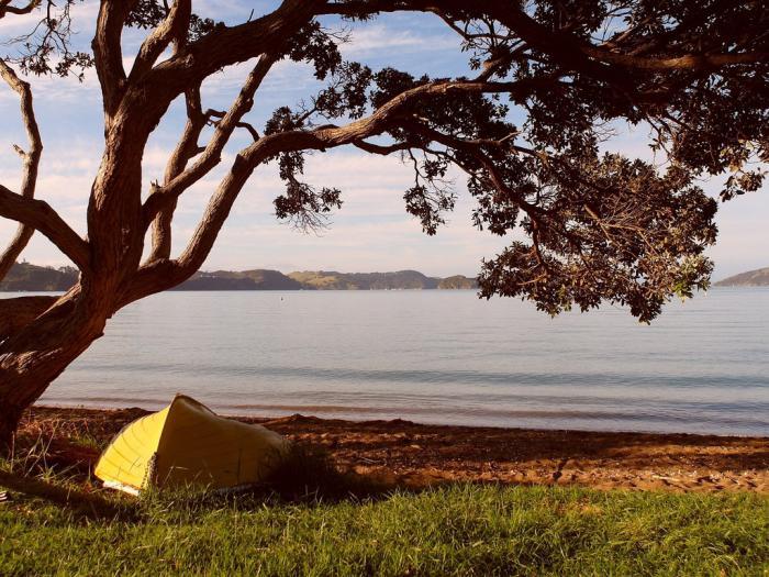 Pohutukawa_Coast