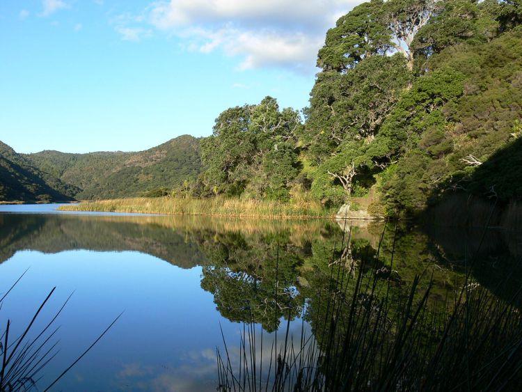 Bethell's Lake