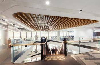 Its timber blind facade helps make this Sydney office warm and approachable