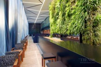 How green walls and roofs can benefit our urban environments