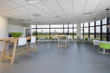 Contemporary acoustic ceiling tiles help create quiet office spaces and meeting rooms