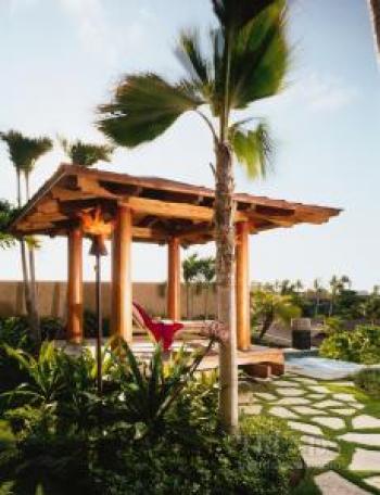 Under the tropical sun