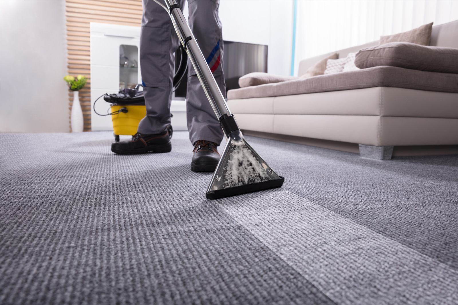 Cherie-Barber_Renovating-For-Profit_How-To Choose-Carpet-cleaning