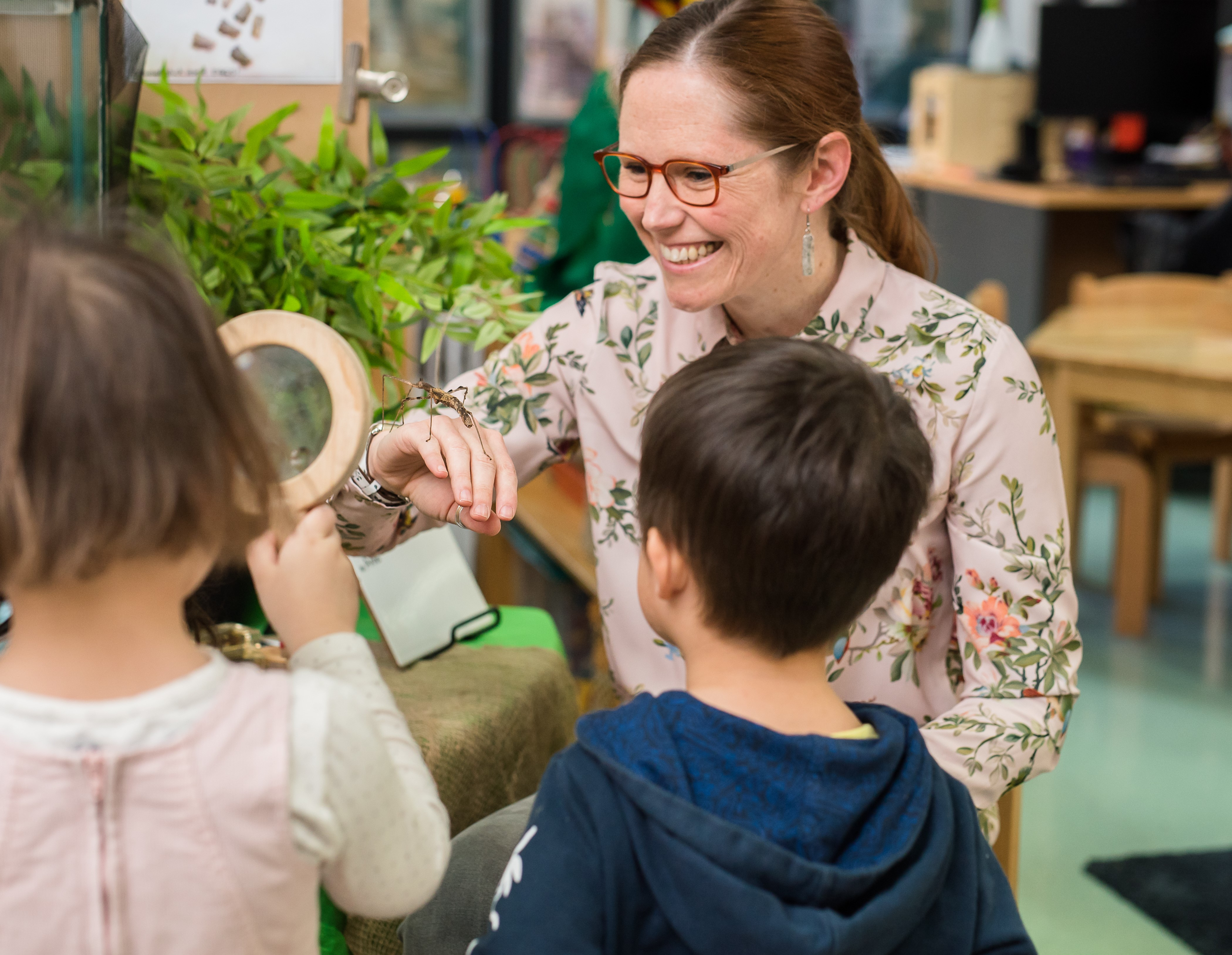 igs-early-learning-stick-insects-2019