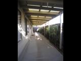 56B Denys Street Fawkner - image