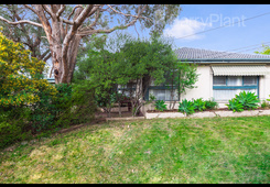 28 Lightwood Drive Ferntree Gully image