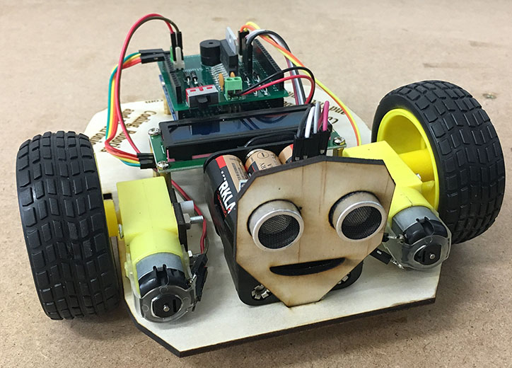 Build this great little robot and take it home
