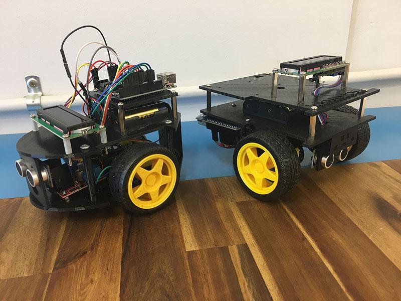 Custom Robots