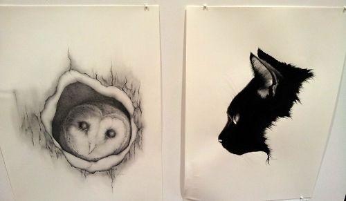 Rhiannon Mowat, 'Barn Owl' and 'Kitten'.