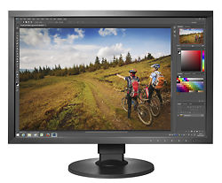 "Eizo ColorEdge CS2420 24"" Monitor"