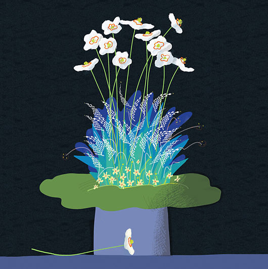 Hello Anemone Hybrida
