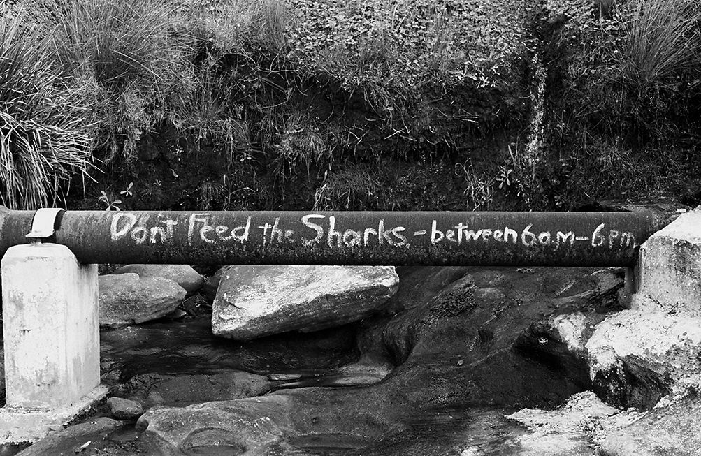 Shark Sign, Sandshoes, 1963
