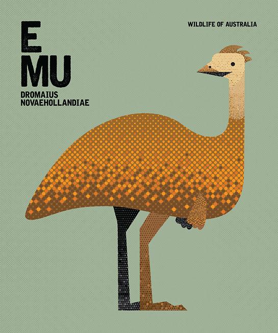 Chaun Soh Emu