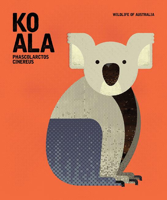 Chaun Soh Koala 1