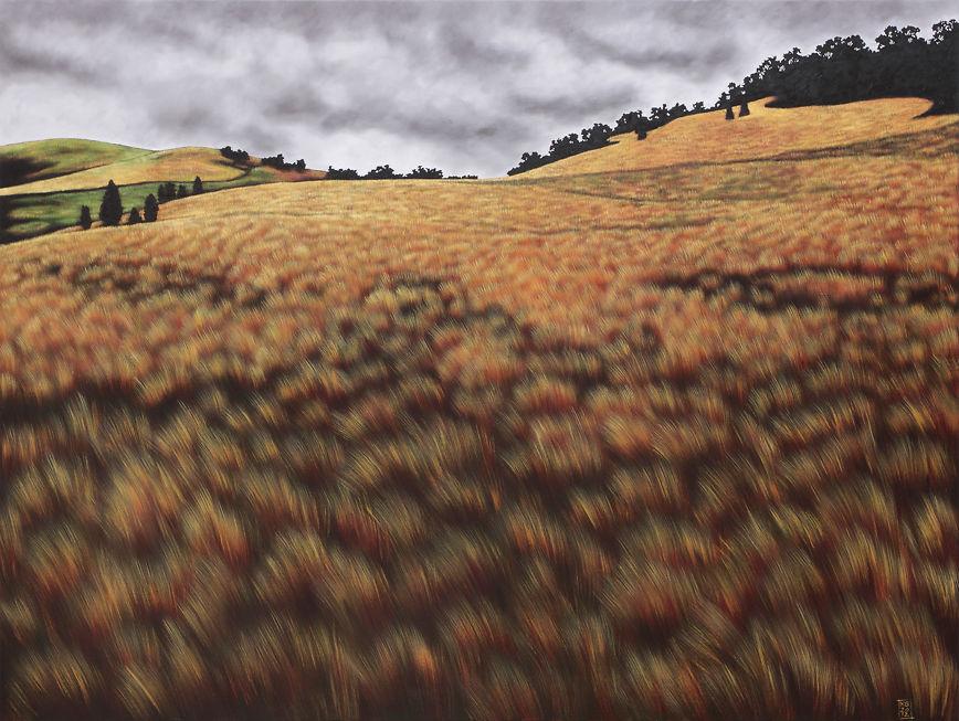 Karen Standke - Pyrenees Landscape I Sabans Paddock At Mrangalli