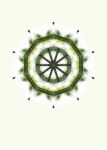 Grass Wheel