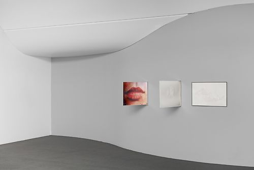 Peta Clancy 'Punctures' Installation View, Chromogenic prints viewable from front and back, clear acrylic frame and stainless steel bracket