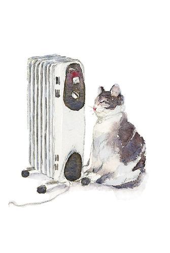 Heater Cat - Qing Zhang