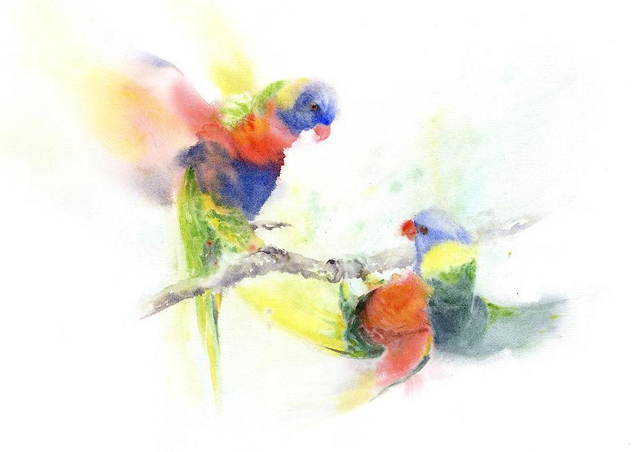 Lorikeets - Qing Zhang