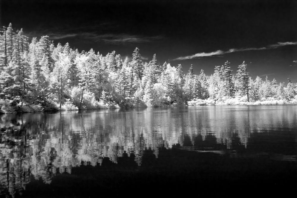 Example of Black and White Infared Film Image
