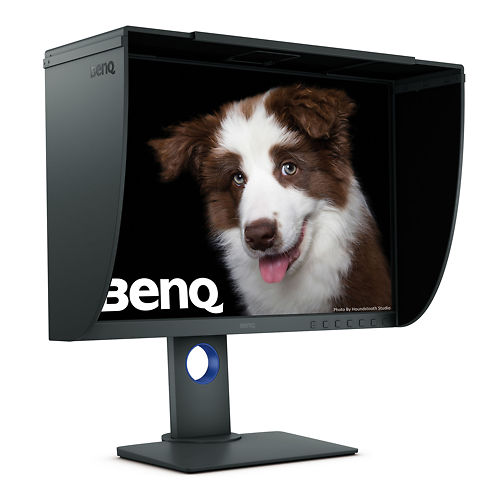 BenQ SW240 24 Inch Monitor 45 Degree Left View