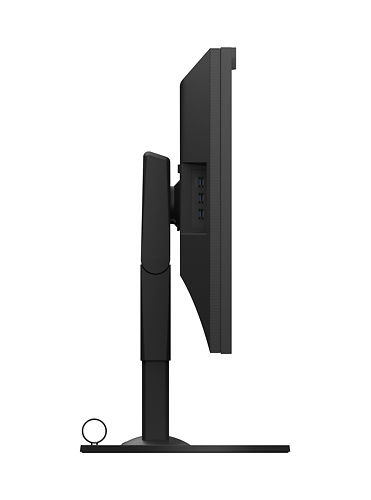 "Eizo CG319X 31"" Monitor Side"
