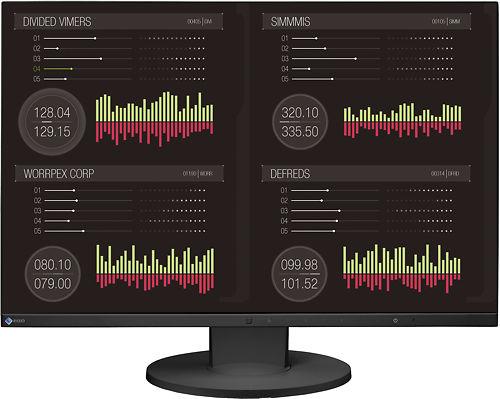 "Eizo Flexscan EV2455 24"" Monitor Master Image"