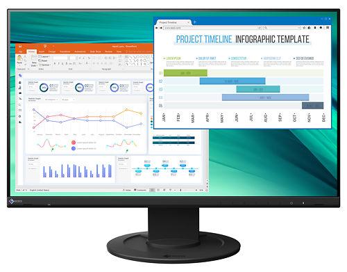"Eizo Flexscan EV2460 24"" Monitor Master Image"