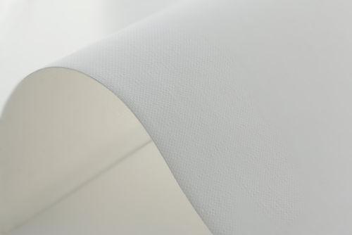 Hahnemuhle Daguerre Canvas 400gsm Texture