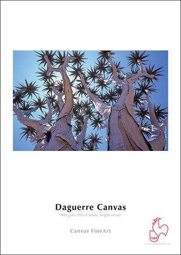Hahnemühle Daguerre Canvas 400gsm Master Image