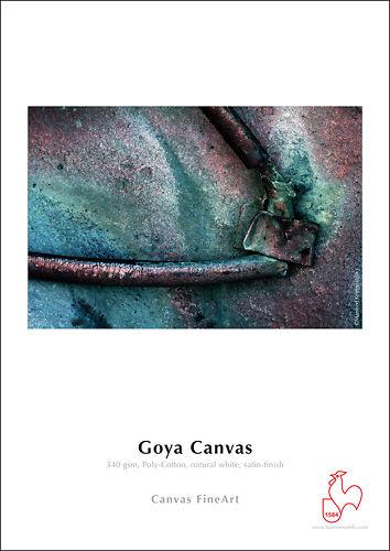 Hahnemühle Goya Canvas 340gsm Master Image