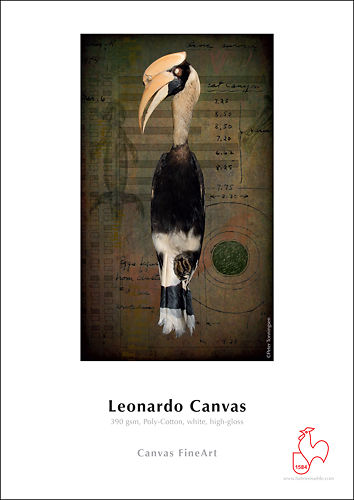 Hahnemühle Leonardo Canvas 390gsm Master Image