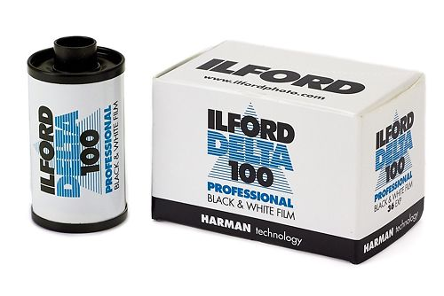 Ilford Delta 100 35mm Black and White Film Master Image