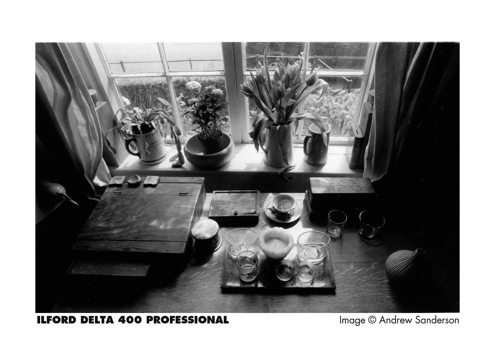 Ilford Delta 400 35mm Black and White Film Image