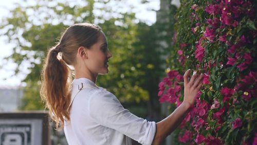 Palette Cube Lifestyle Flowersv2
